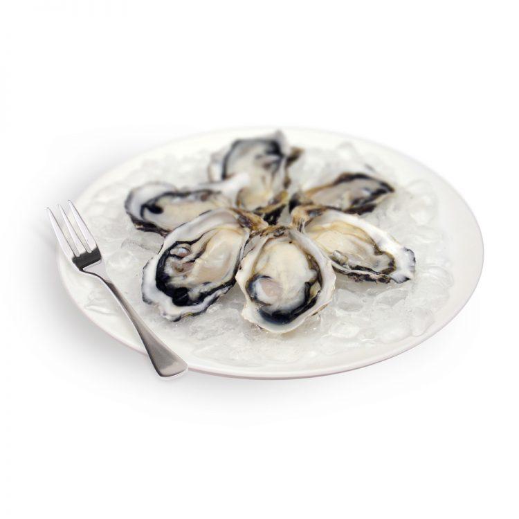 Dish of 6 Kaipara Oysters